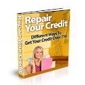 REPAIRING YOUR CREDIT icon