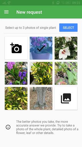 PC u7528 FlowerChecker+, plant identify 2