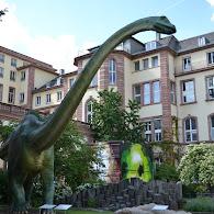 Senckenberg Naturmuseum (Edward's Photos)