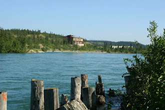 Photo: Yukon River bei Whitehorse