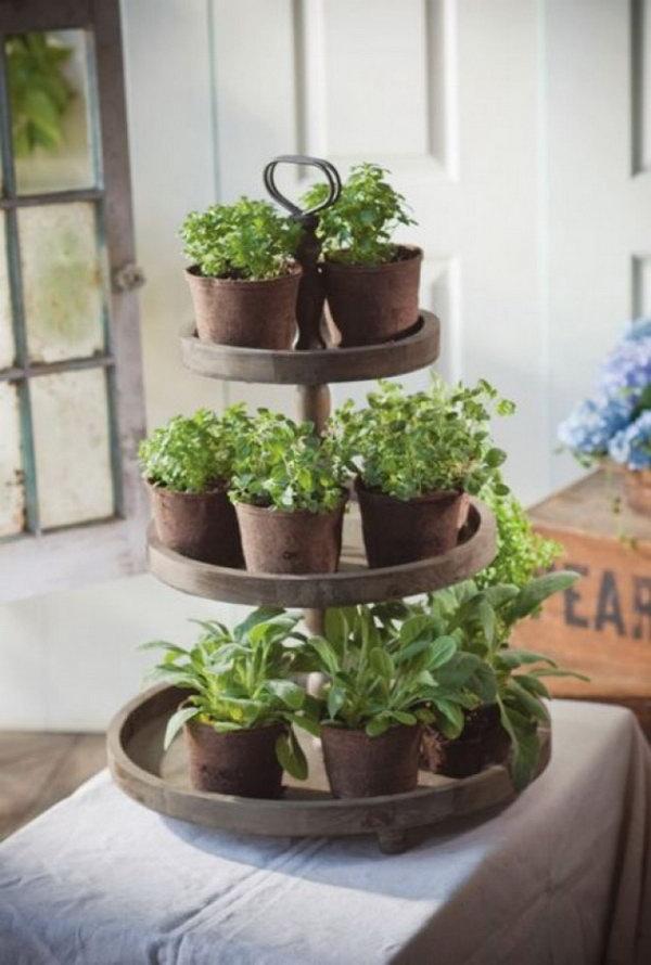 10 Clever Indoor Herb Garden