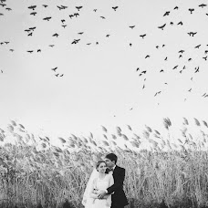 Wedding photographer Dasha Dimovna (Dasha8Dimovna). Photo of 06.11.2014
