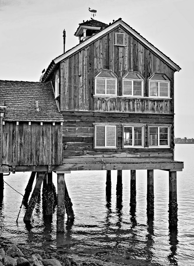 Waterfront Restaurant by Dale Fillmore - Black & White Buildings & Architecture ( archetechture, seashore, black and white, restaurant, waterfront )