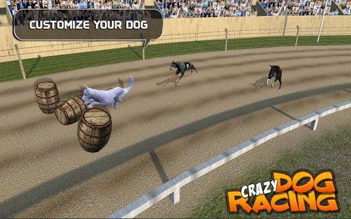 Crazy Dog Racing  {cheat|hack|gameplay|apk mod|resources generator} 2