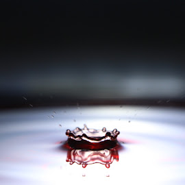 Water Splash Bowl by Bharath Mani - Abstract Water Drops & Splashes ( mirrored reflections, abstract, water reflection, water drops, waterfowl, waterdrop, water droplets, water splash )