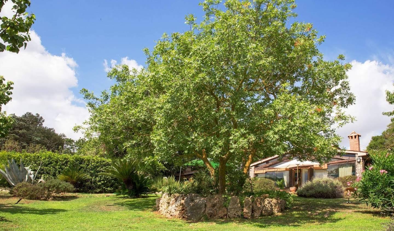 Villa avec terrasse Capalbio