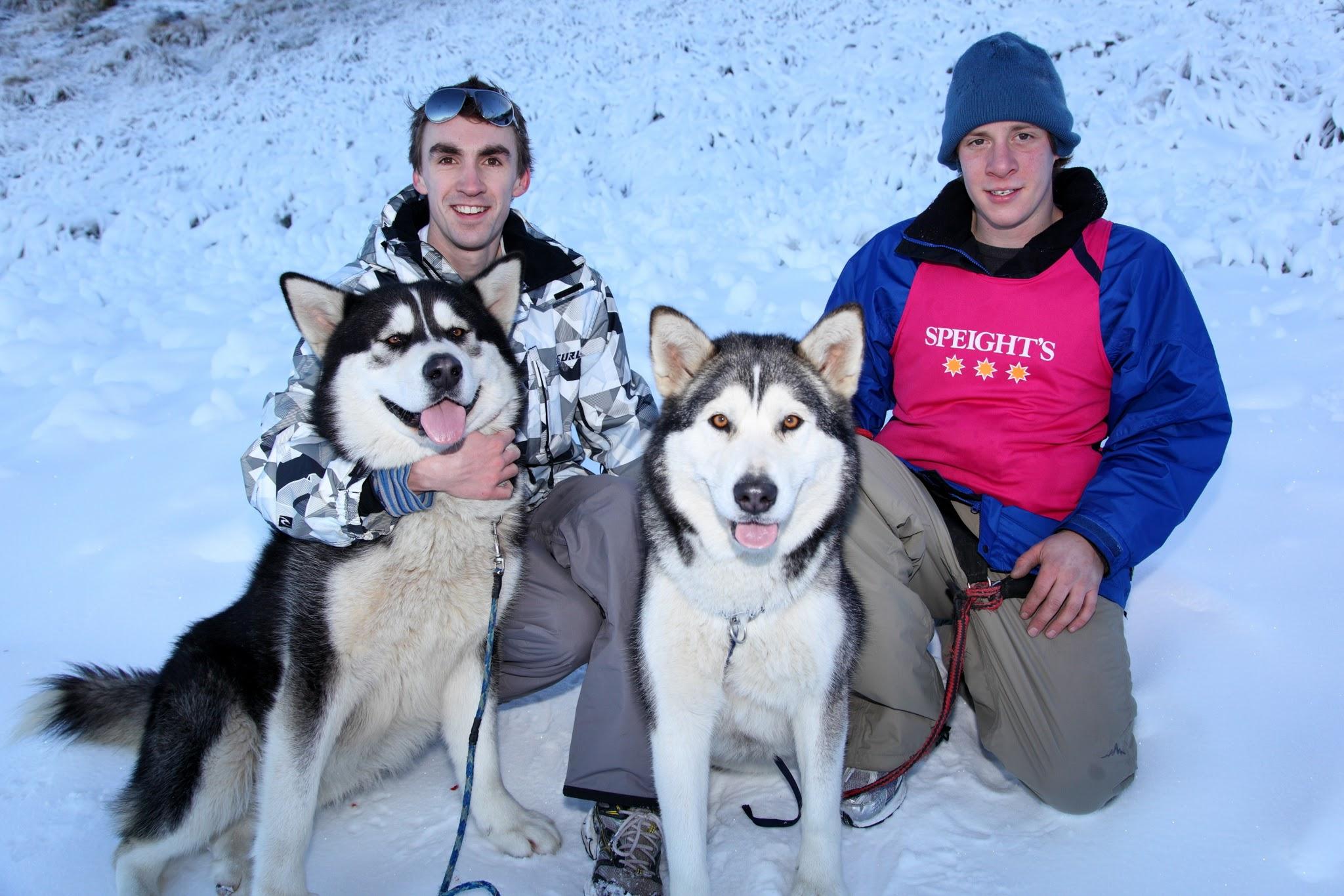 Photo: Speight's Dog Derby on Coronet Peak
