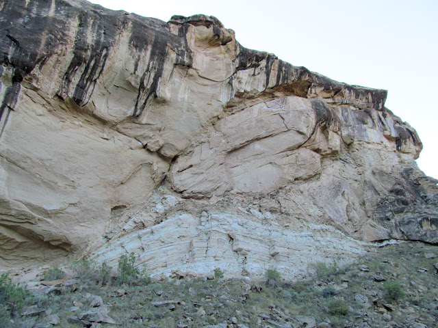 Gnarly rock fold