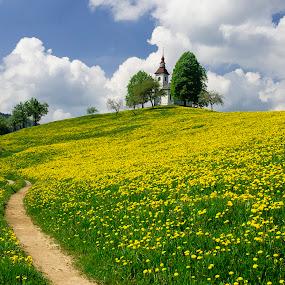 Sv.Tomas by Stane Gortnar - Landscapes Mountains & Hills (  )