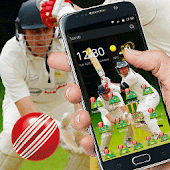 theme cricket popular sport