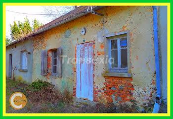 maison à Neuvy-sur-Barangeon (18)