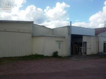 locaux professionels à Friardel (14)