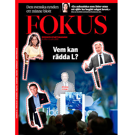 Fokus #23/19