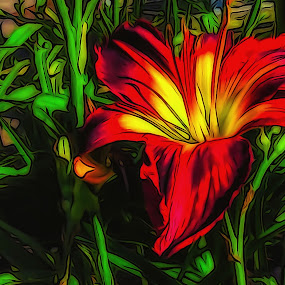 Christmas Lily by Dave Walters - Digital Art Things ( flowers, sony hx400v, abstract, colors, digital art )
