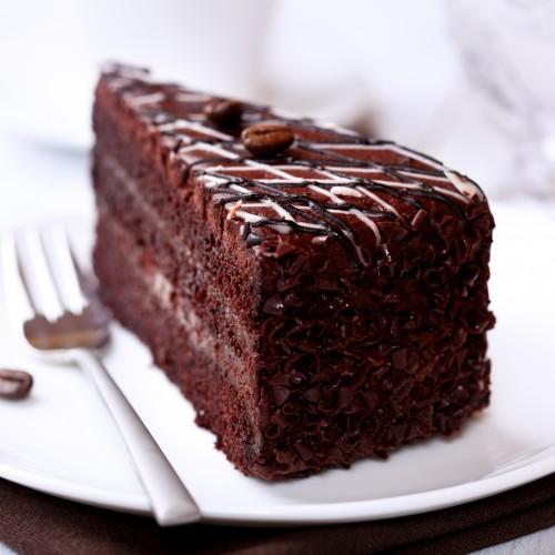 Mud Fight Chocolate Cake