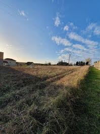 terrain à Marolles-lès-Bailly (10)