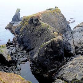 Bumble Rock by DJ Cockburn - Landscapes Caves & Formations ( england, coastline, bumble rock, britain, cornwall, cliff, bumble cove, island, shore, south west coast path, sea, mist, rock, coast, atlantic, ocean, uk, lizard, landscape, fog )