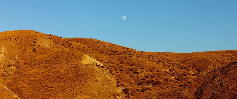 Visioni Lunari di Lela69