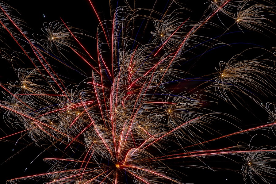 by Mike Craig - Public Holidays July 4th ( fireworks )