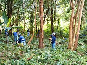Photo: 2014/08 コーヒーの植樹(Planting coffee tree)