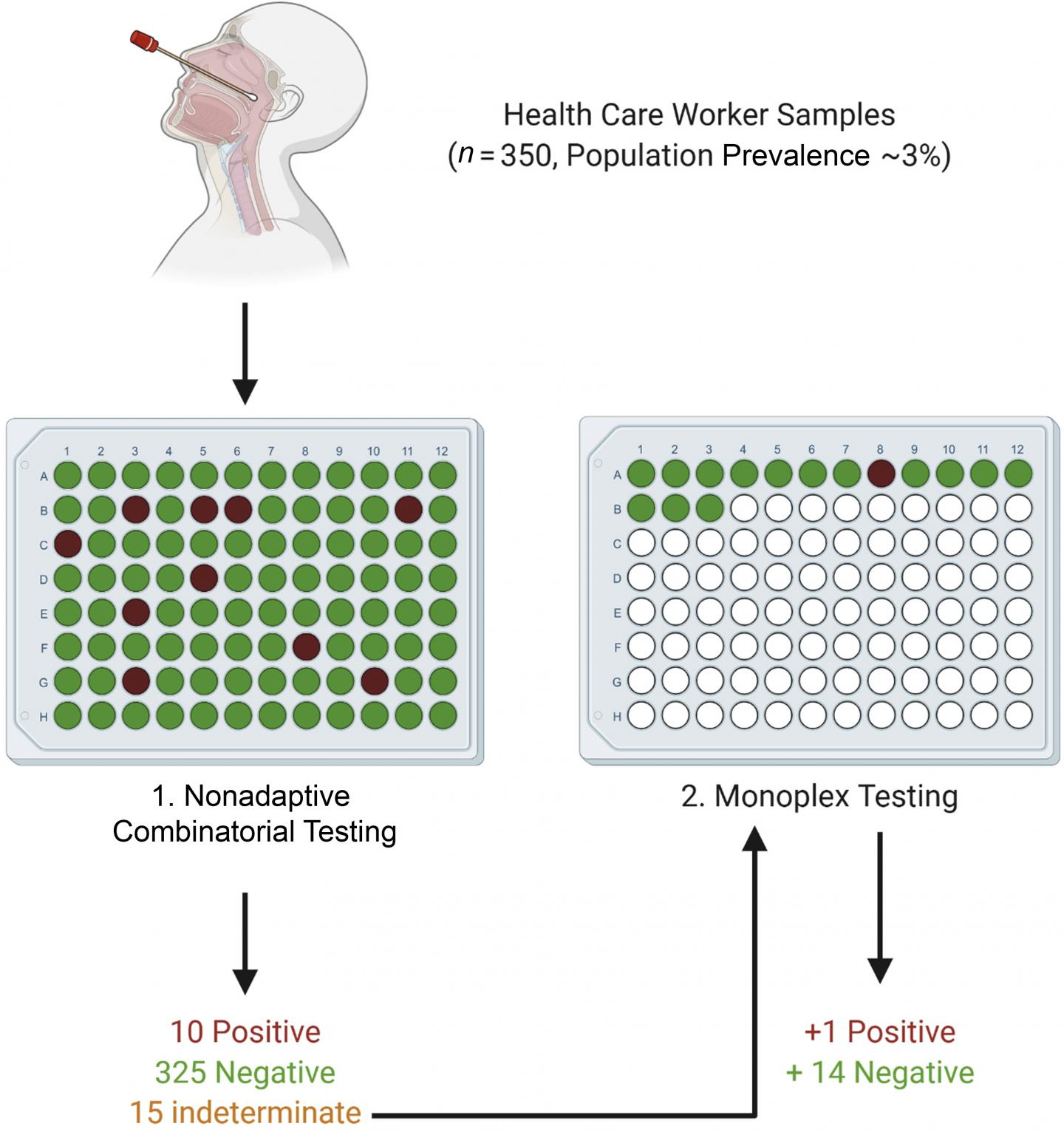 Uma única rodada do novo teste foi capaz de confirmar o status de 335 amostras, ou seja, 96% do agrupamento. (Fonte: The Journal of Molecular Diagnostics/Reprodução)