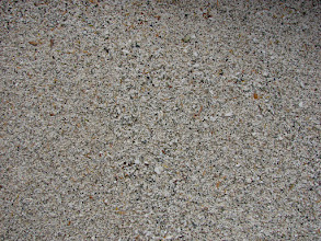 Photo: Crushed shell beach at my campsite west of Cape Fox.