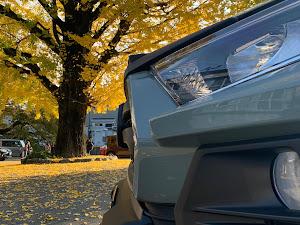 RAV4 MXAA54のカスタム事例画像 TAKE-ZO(JapTake)さんの2020年11月15日08:35の投稿