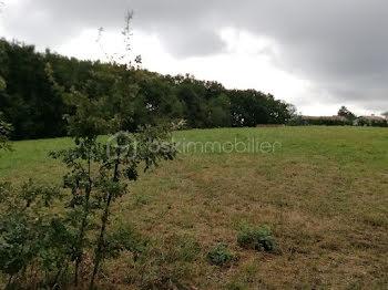 terrain à Saint-Loubouer (40)