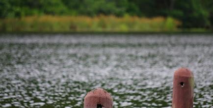 Photo: Shady Lake
