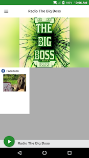 Radio The Big Boss- screenshot thumbnail