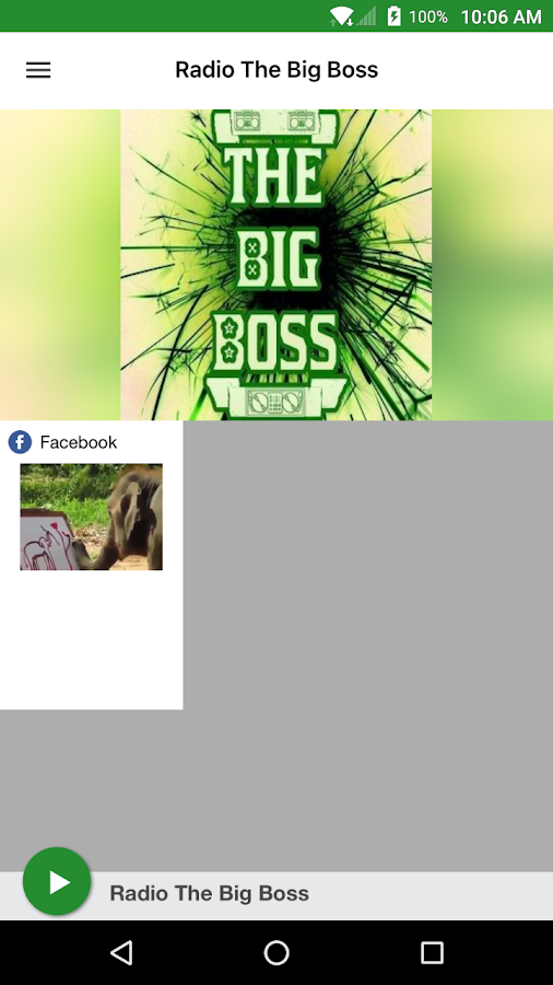 Radio The Big Boss- screenshot