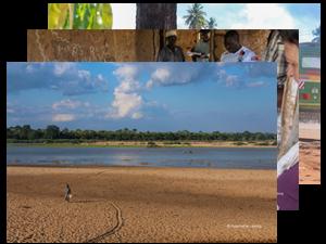 Livelihoods in Tanzania