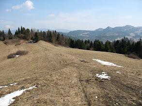 Photo: 24.Na Targovie (610 m), skuszony zaznaczonymi na mapie łąkami (widoki?) oraz wieżą widokową (?), opuszczam znakowany szlak i udaję się leśną drogą na szczyt Plašná (889 m), która jest najwyższym wierzchołkiem Grupy Holicy.