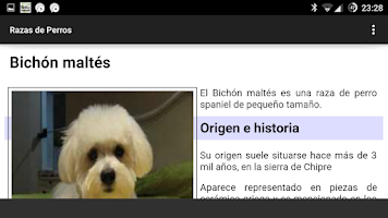 Screenshot of Razas de Perros
