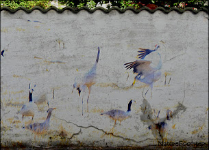 Photo: Crane Dance with texture Wall and blending mode Linear Burn NF Photo 130406 http://nfbild2.blogspot.se/2013/05/abstract-opposites.html