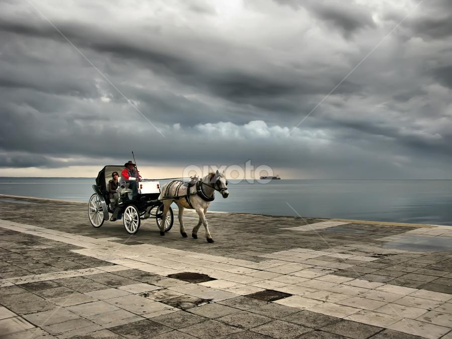 Coming storm by Daliana Pacuraru - City,  Street & Park  Street Scenes ( water, clouds, daliana pacuraru, pwcfoulweather, ship, horse, storm )