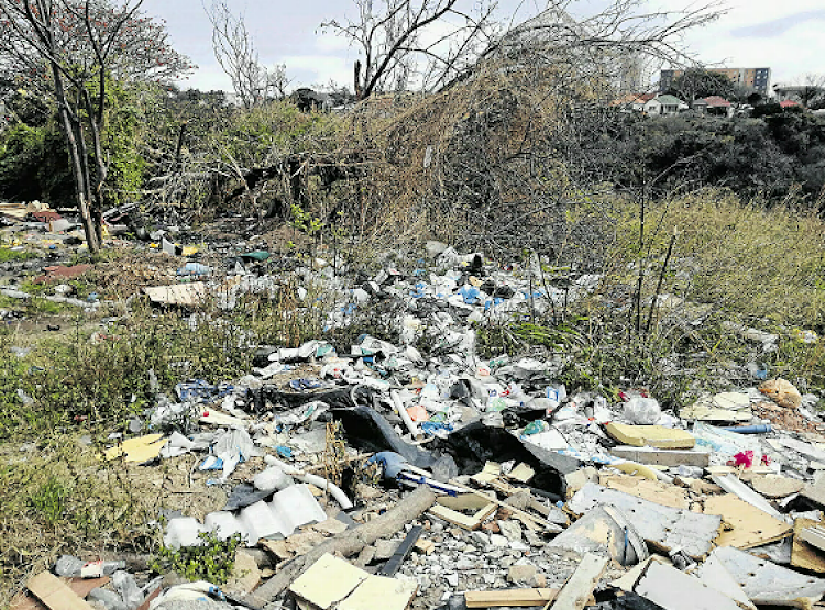 Litter strewn along Atlas Road in the industrial part of Arcadia.
