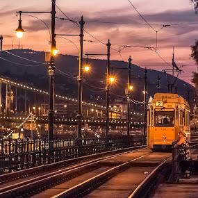 Tram in Budapest by Mo Kazemi - Transportation Other ( budapest hungary, city, night, magic hour, purple sky, hungary, chain bridge, golden hour, nightscape, sunset hour, cityscape, budapest, bridge, tram, night scene, europe, lights )