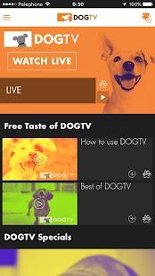 DOGTV - náhled