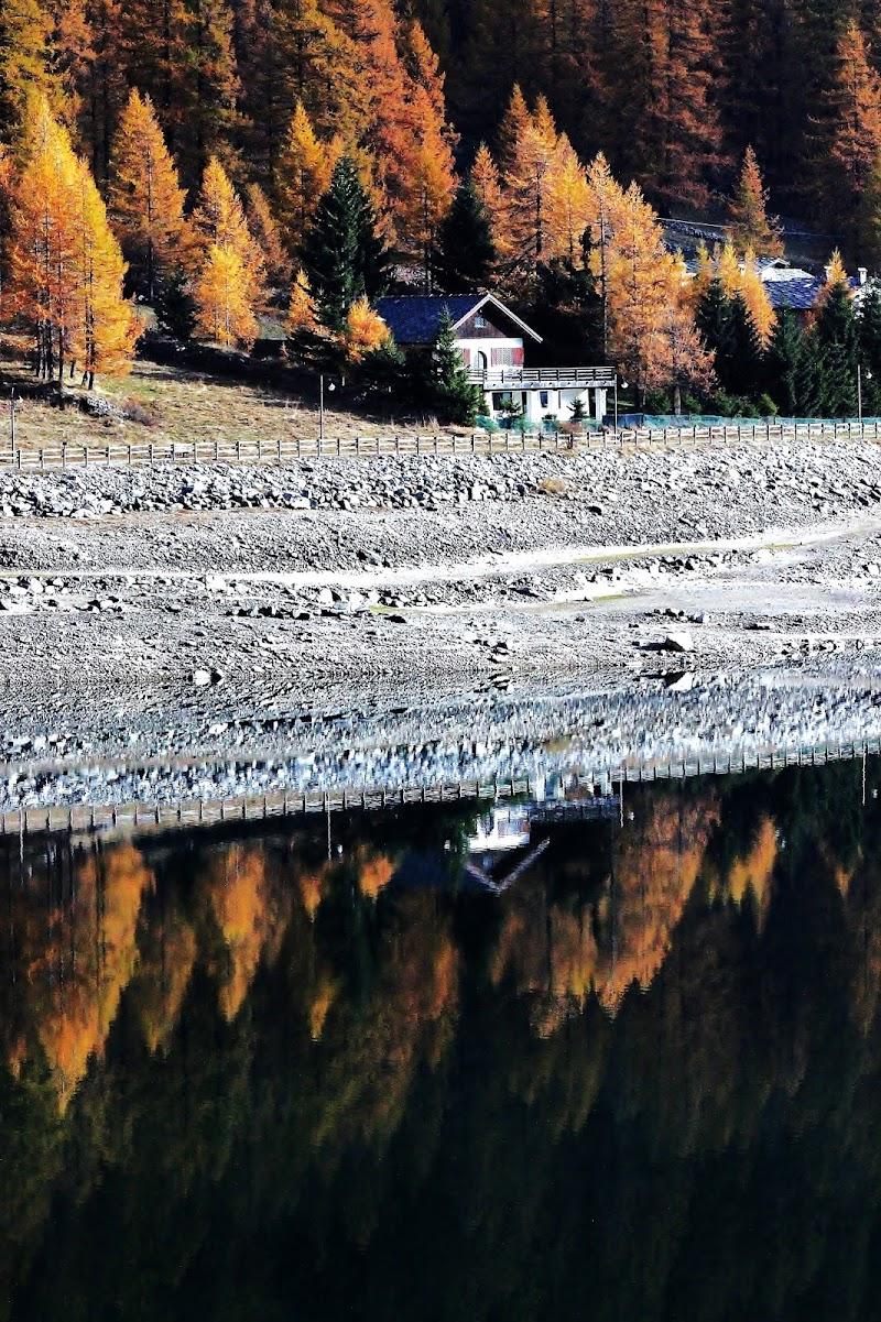Riflessi sul lago di ScrofaniRosaria