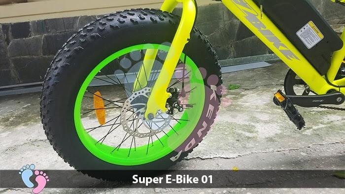 Xe đạp điện địa hình Super E-Bike 01 8
