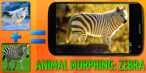 Animal Morphing: Zebra Hybrid 1.2 screenshots 6