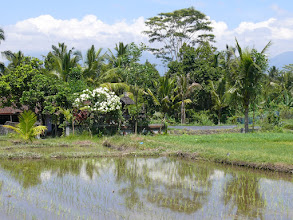 Photo: 13. Bali Island.