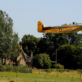 Maggie takes off by DJ Cockburn - Transportation Airplanes ( piston engine, open cockpit, shuttleworth collection, de havilland gipsy major, flying, england, tree, monoplane, airfield, propeller, miles magister, vintage, airplane, aeroplane, biggleswade, museum, p6382, flight, aircraft, old warden, bedfordshire, air display, take off, antique, air show, britain )