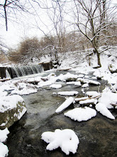 Photo: Waterfall under barren trees and snow at Eastwood Park in Dayton, Ohio.