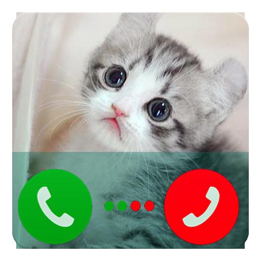 Fake Call Talking Cat Hank