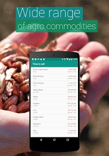 Commodity Price Online - náhled