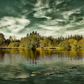Peace of Mind by Fernando Cordeiro - Landscapes Waterscapes ( water, waterscapes, landscapes )