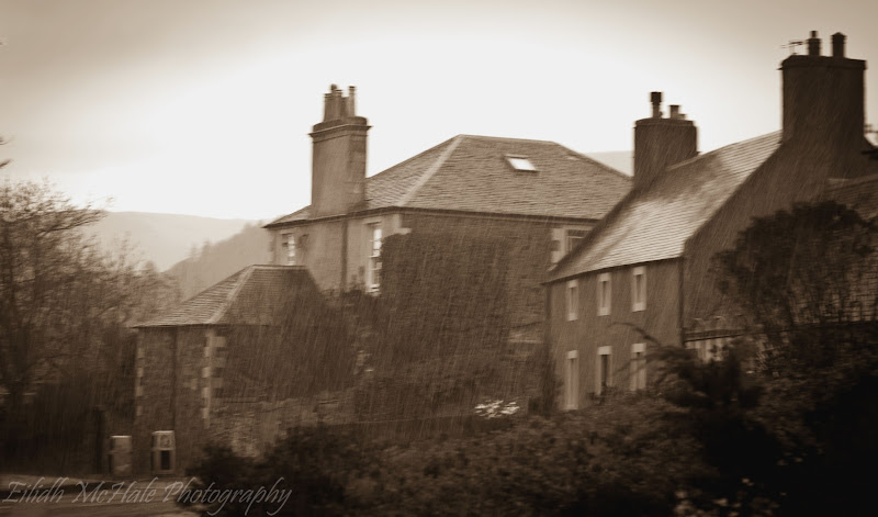 Photo: Day 186 of my #365project this was taken during a hail storm so it also fits #wetwednesday by +Susanne Schweiger