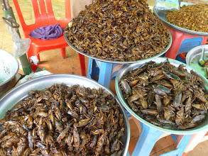 Photo: They had fried grasshoppers, water beetles, and crickets.  These are delicacies in Cambodia.